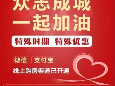 最新消息,上海现代城线上售楼处已开启
